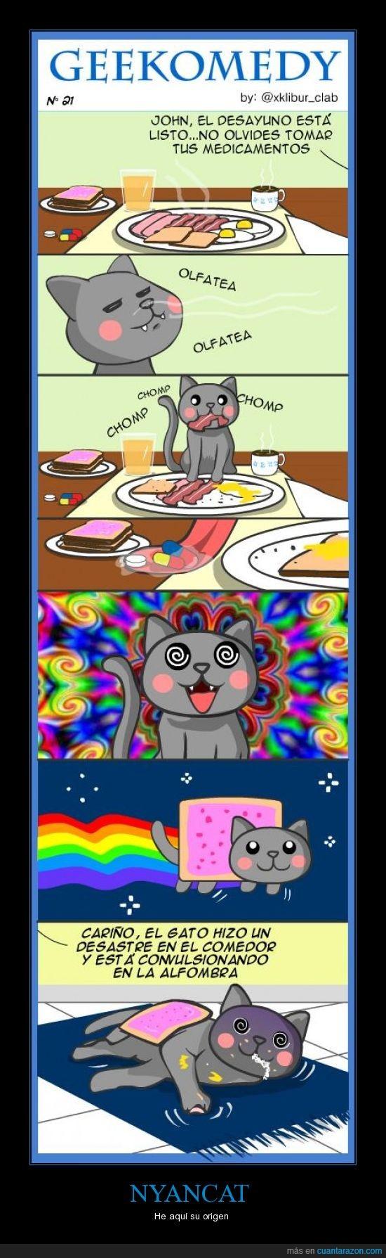 colores,gato,nyan cat,pastillas