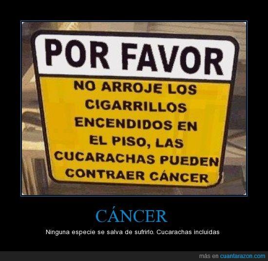cáncer,cigarrillos,cucarachas
