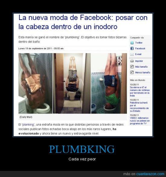 baño,estupidos,inodoro,planking,plumbking
