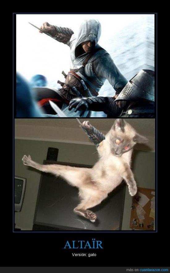 altair,gato,hoja oculta,templario,versión