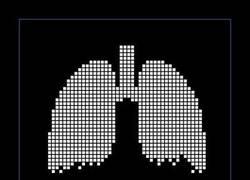 Enlace a FUMAR MATA