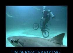 Enlace a UNDERWATERBIKING