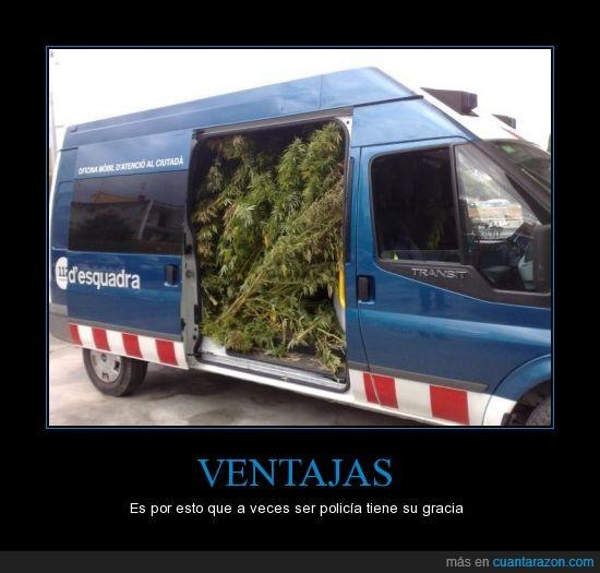 furgoneta,marihuana,policía,ventajas