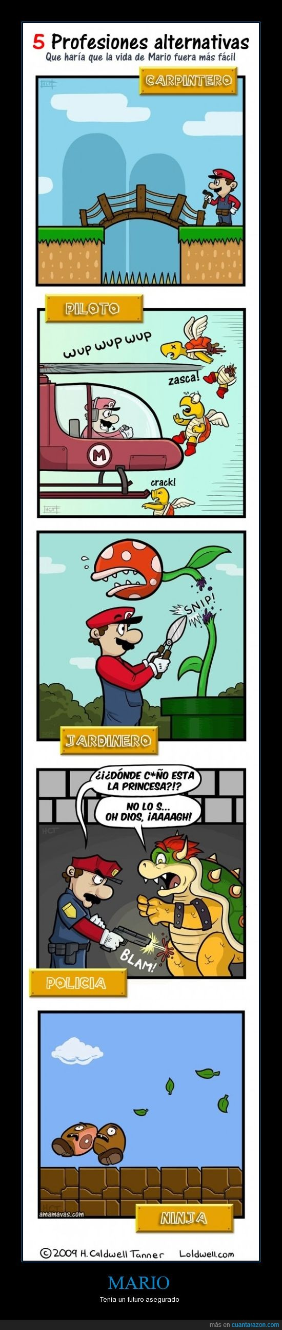 Alternativas,Mario Bros,Profesiones
