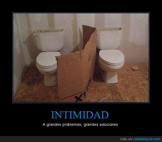 baños,cartón,construcción,drama,intimidad,panel