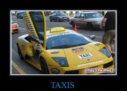Enlace a TAXIS