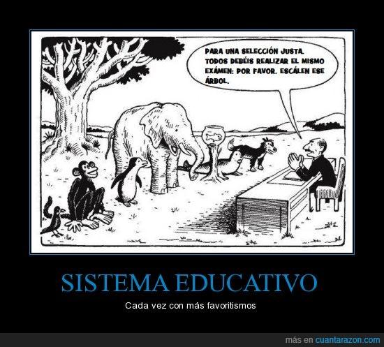 animales,arbol,escalar,funcionar,injusticia,mono,sistema educativo