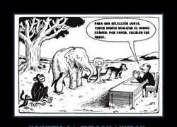 Enlace a SISTEMA EDUCATIVO