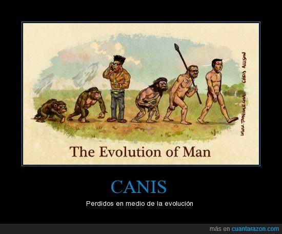 cani,evolución,hombre