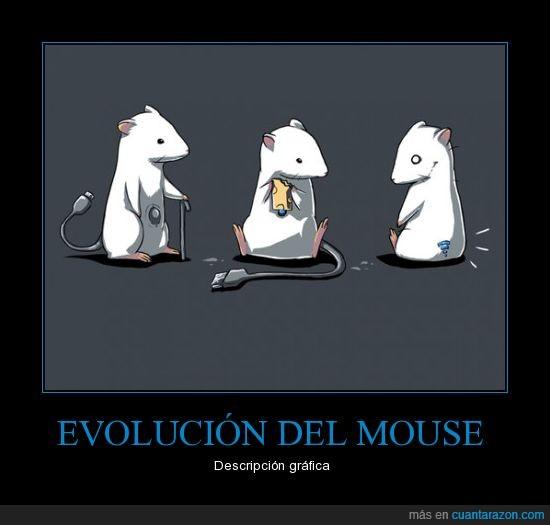 cable,evolución,ratón