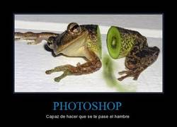 Enlace a PHOTOSHOP