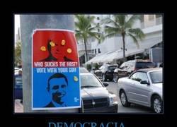 Enlace a DEMOCRACIA