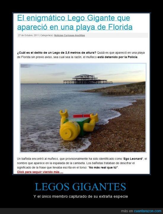 gigante,lego,lol,playa
