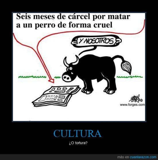animales,carcel,españa,noticias,toros,tortura