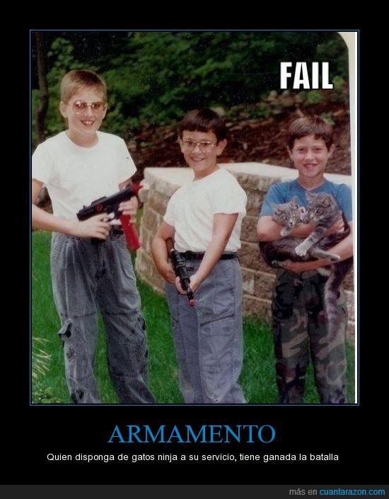 armas,gatos,ninjas