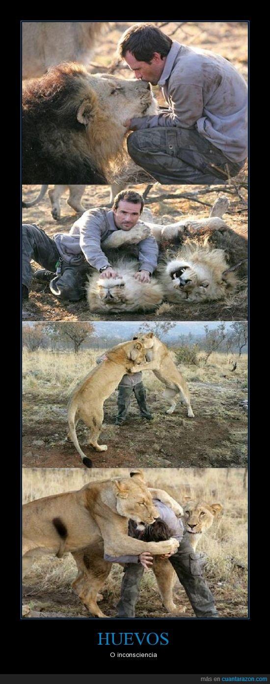 amistad,amor,Kevin Richardson,leon