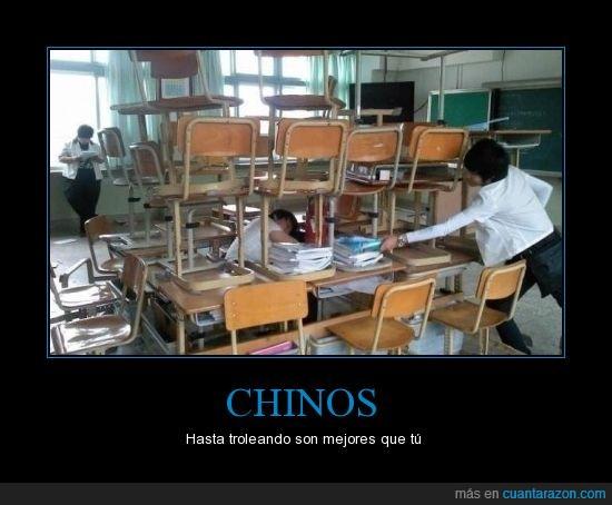 chinos,clase,dormido,jaula,sillas