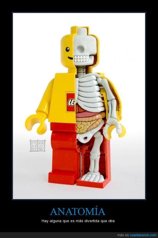 cuerpo,humano,interior,Jason Freeny,lego