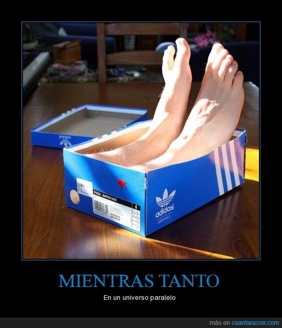 caja,paralelo,pies,universo,zapatos
