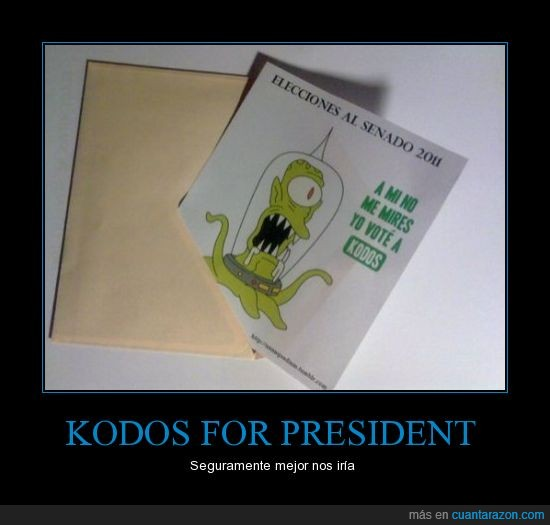 20N,elecciones,futurama,papeleta,votar,voto