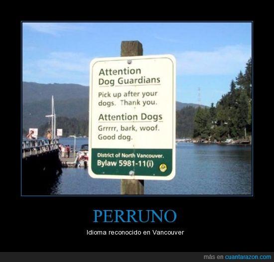 dueño,letreros,perro,signo