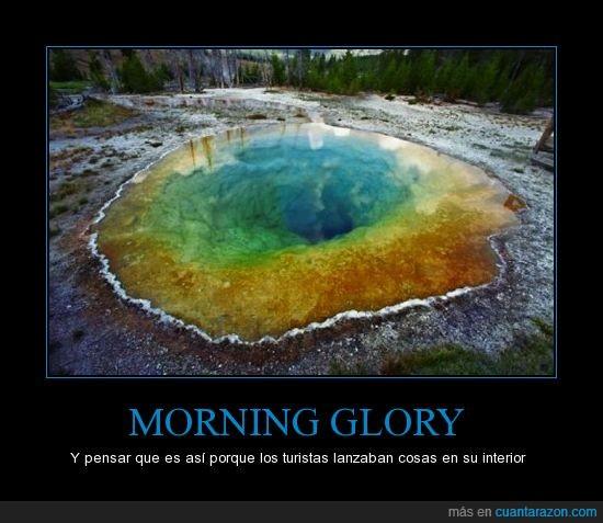 agujero,flipante,morning glory
