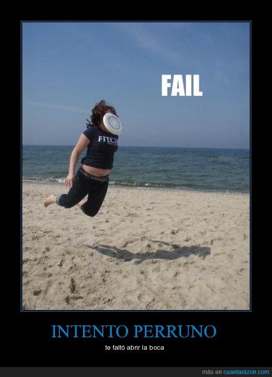 fail perra playa frisbee