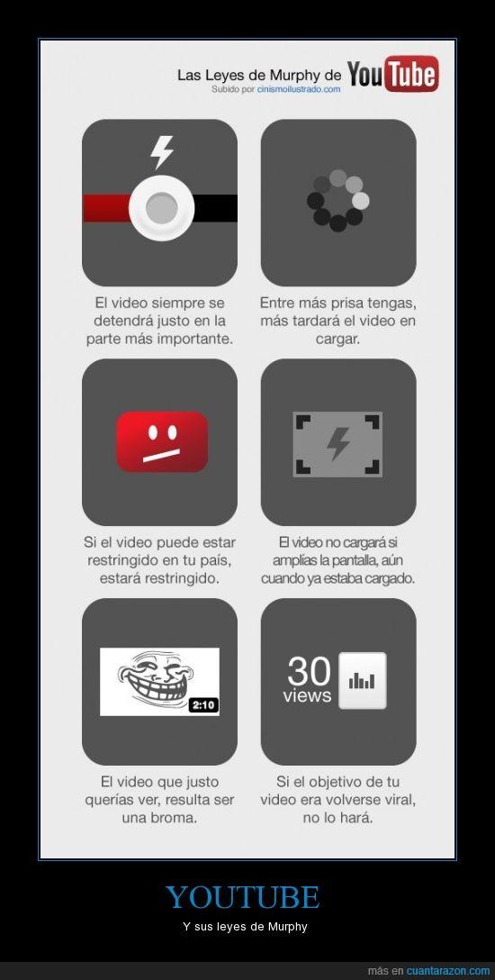 internet,ley,murphy,troll,video,youtube