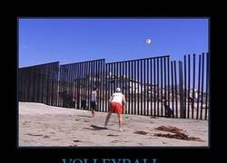 Enlace a VOLLEYBALL