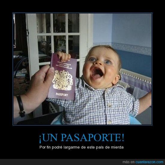 alegría,bebé,loco,pasaporte