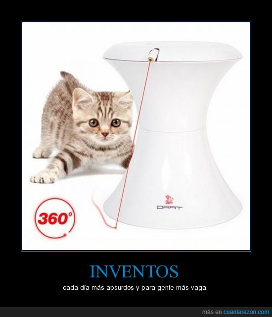 absurdo,gatos,gente,inventos,vagos
