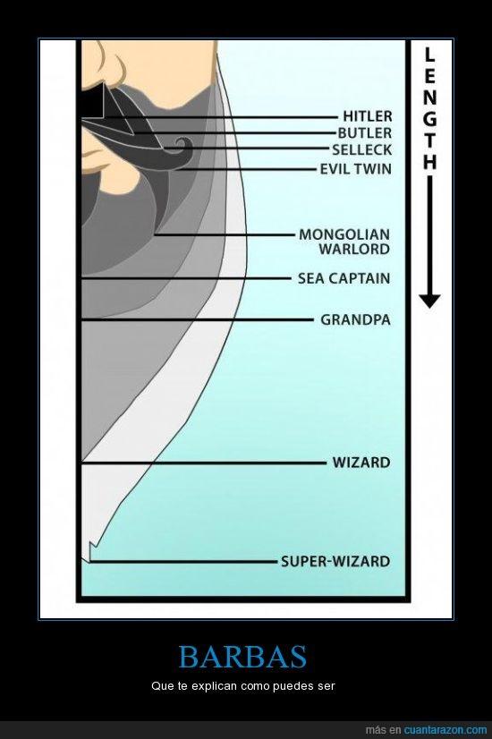 barba,longitud,tipos