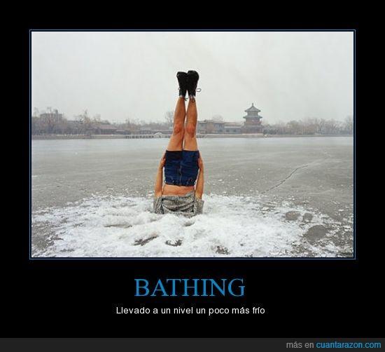 agua,Bathing,hielo