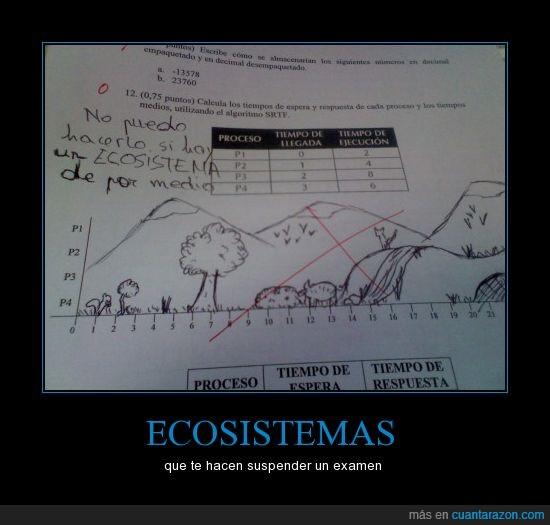 ecosistema,examen,grafica