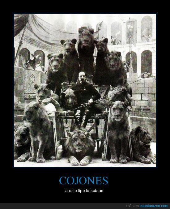 domador,leones