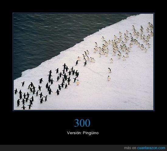 300,guerra,pingüino,pinguinos
