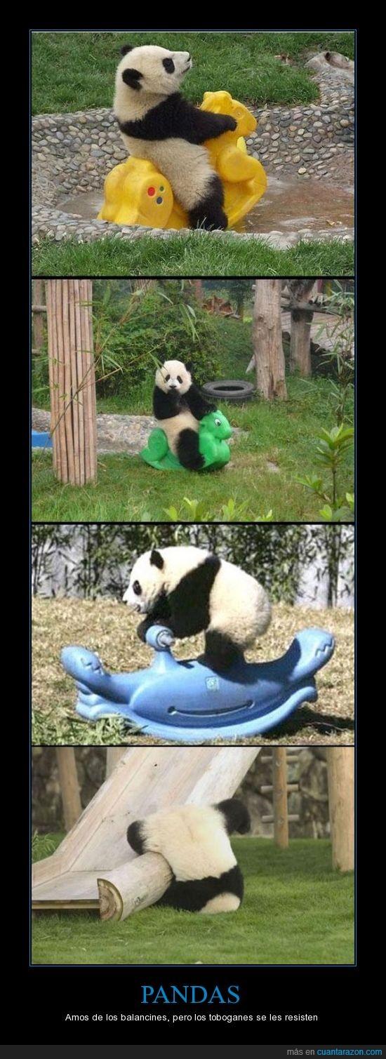 balancines,caidas,pandas,toboganes