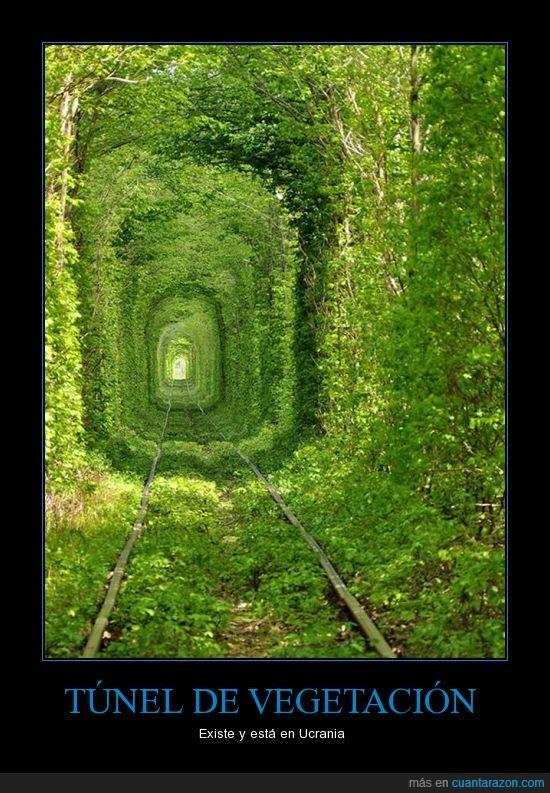 naturaleza,tren,túnel,ucraina