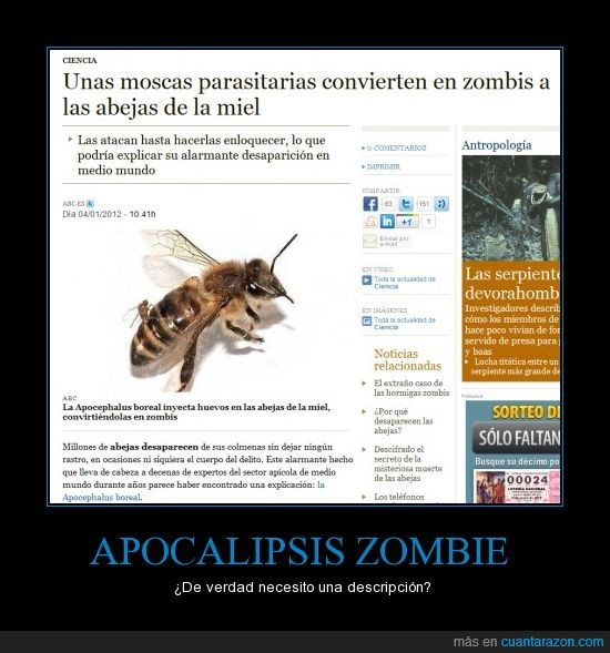 zombie abejas apocalipsis abc noticia
