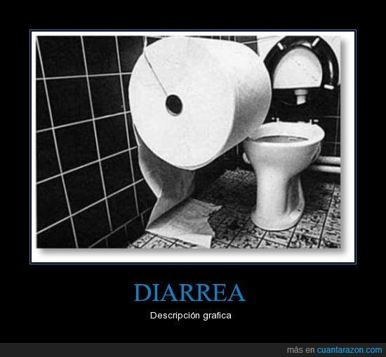 blanco y negro,descripción,diarrea,gráfica,higiénico,lavabo,papel