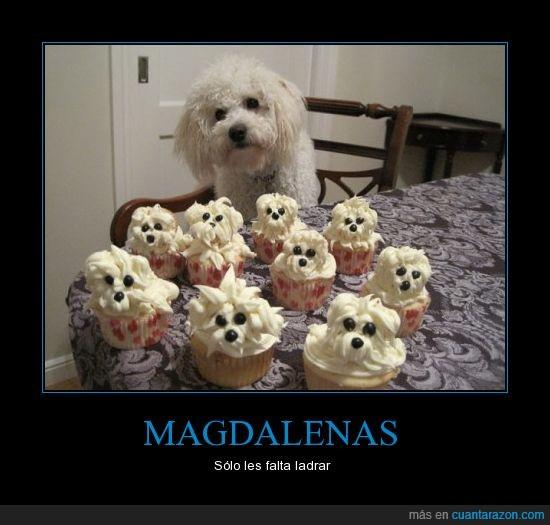 cara,crema,magdalenas,merengue,parecidos,perros