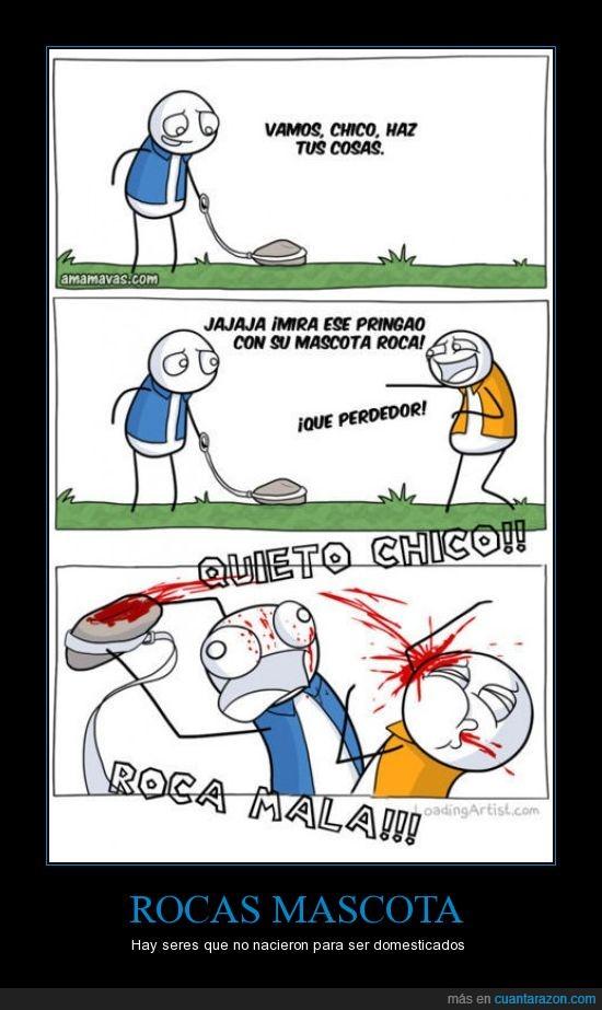 amigo,mala,mascota,roca,sangre