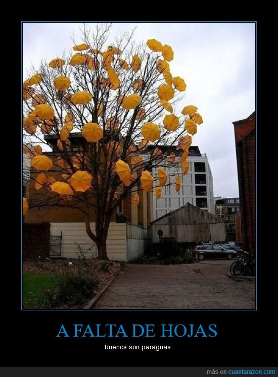 árbol,arte urbano,hojas,paraguas