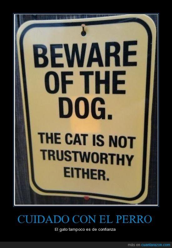 cartel,cuidado con el perro,gato