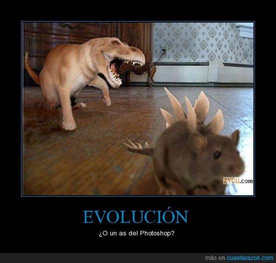 dinosaurio,photoshop,trex,triceratops
