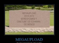 Enlace a MEGAUPLOAD