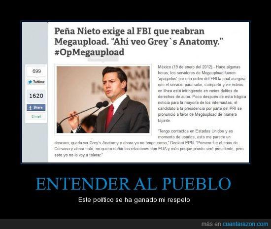 #opmegaupload,anatomía de grey,politico
