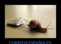 Enlace a CORREOS ESPAÑOLES