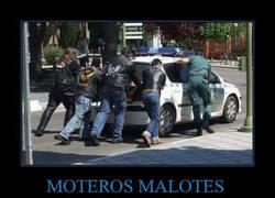 Enlace a MOTEROS MALOTES