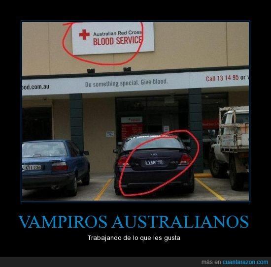 blood service,matricula,sangre,vampiro